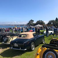 Vintage cars at Concours d'Elegance in La Jolla near Pantai Inn