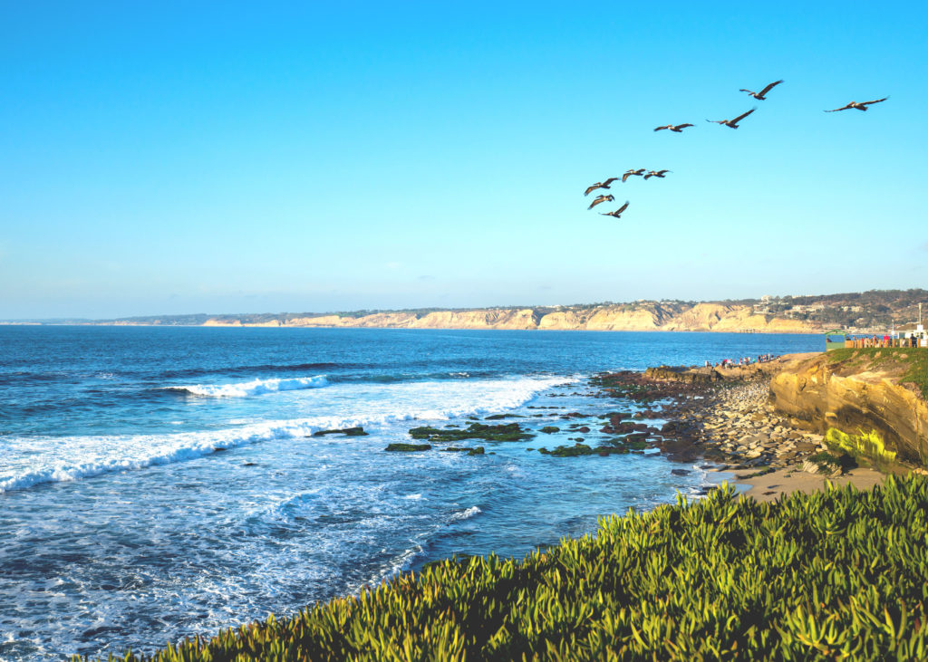 View of the Pacific Ocean from Shell Beach with blue skies and flying birds